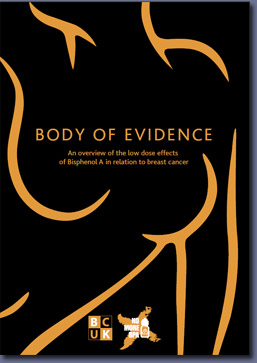 Pic: Body of Evidence report - click to download from the E-Library